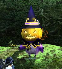 かぼちゃやろう