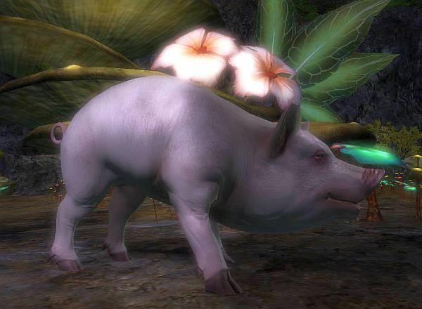 すばらしい豚